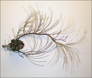 Pine Branch Wall (Small, Brass Needles)